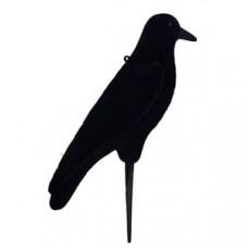 Чучело подсадное, ворона черная D73410F