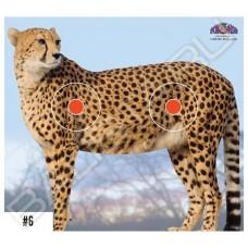 Мишень бумажная Spot Hogg Safari леопард