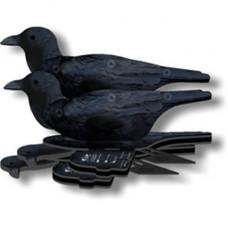 CR Комплект ворон 6шт. Crows