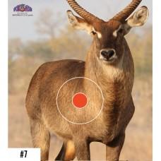 Мишень бумажная Spot Hogg Safari антилопа куду